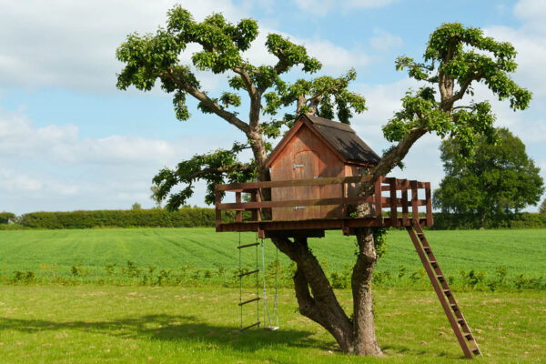 A Large Treehouse